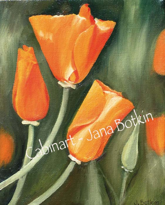 8x10-poppies-1.jpg