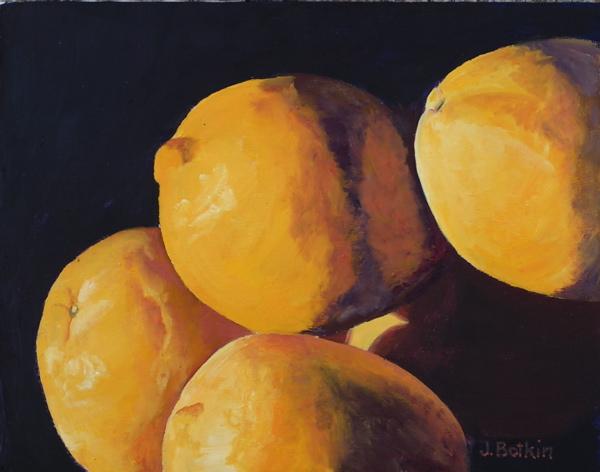 maggies-lemons.jpg