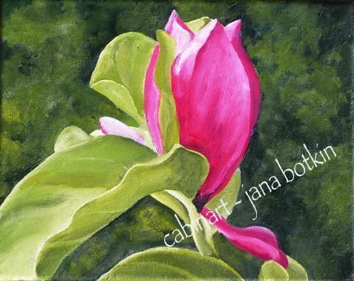 chinese-lotus.jpg